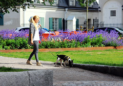 Walking (Linnea from Sweden) Tags: canon eos 1100d efs 55250mm f456 is 456 building house city street grass flowers girl dog summer lovely walking