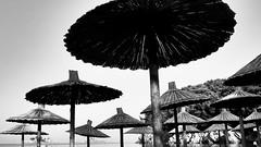 Ufo (plyushchikhafilm) Tags: ufo beachumbrella