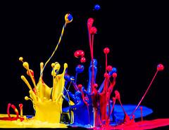 Paint Party (Brandon_Hilder) Tags: paintspeakerdrops highspeed flash stopmotion freezeframe paint color colorful splash paintabuse paintspeaker speaker sound music paintonspeakers colorfull nikon 105mm macro nikon105mmmacro nikon105 nikon105mm d810 nikond810