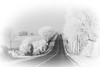 2017 (Yves Lahanque) Tags: nb road froid nikon2470 route paysage chemin