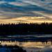 Sunrise at Irishtown Nature Park
