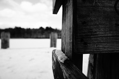 DSC04077-2.jpg (The Active Shooter) Tags: daytime turtlepond bnw dock