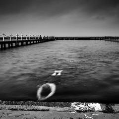 Narrabeen (Halans) Tags: narrabeen pool oceanpool