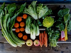 Suzie's CSA box, Week of Feb. 20 - 26