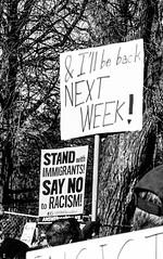 2017.02.04 No Muslim Ban 2, Washington, DC USA 00426
