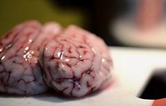 Menoum Menoum (Gilles Meunier photo) Tags: repas meal diner cervelle