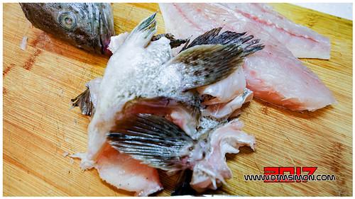 石斑魚05.jpg