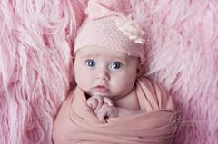 DSC_4069 (Claire Jaggers Photography) Tags: newborn baby 3months portrait monolight sidelight 50mm nikond700