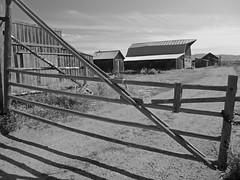 Farm at Mormon Row (bhotchkies) Tags: usa wyoming teton grandtetons grandtetonnationalpark farm mormonrow