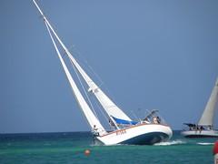 140-DSCN9483 (eric15) Tags: sea beach water race cat for boat eva surf sailing wind offshore sailors luna aruba international dash sail regatta sailor optimist sunfish oranjestad surfside