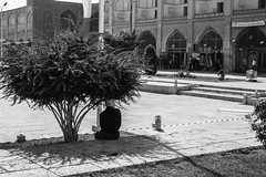 Isfahan - Piazza Imam (Domenico Be) Tags: iran streetphotography persia bazar isfahan imamsquare khajubridge canoneos1100d