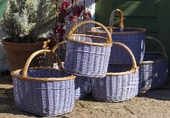 Korgar Capellagrden land Sweden (StefanOlaison) Tags: purple sweden lila baskets sverige suecia land prpura cestas vickleby korgar capellagrden
