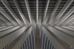 Station Luik-Guillemins (Frank Berbers) Tags: belgium belgi luik architectuur lige belgien 2015 lttich nachtopname stationluikguillemins