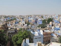 """Jodhpur: à la découverte de la ville bleue <a style=""""margin-left:10px; font-size:0.8em;"""" href=""""http://www.flickr.com/photos/127723101@N04/22528824142/"""" target=""""_blank"""">@flickr</a>"""