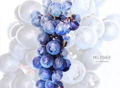 artwork G R A P E (* Mel Fisher *) Tags: blue inspiration color detail nature fruit work fun design artwork kunst indigo lila round form blau ja grape whatthehell wein trauben frei nass spinnerei weintrauben freigestellt creativ weinbeeren creativeanything