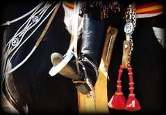 El oscuro (Eduardo Amorim) Tags: horse southamerica argentina caballo cheval spur sperone pferde poncho cavallo cavalo gauchos pferd ayacucho pampa loro hest pala hevonen apero gaucho staffa  amricadosul loros stirrup hst gacho estribo  amriquedusud provinciadebuenosaires  recado gachos  sudamrica esporas suramrica amricadelsur  sdamerika freno cabresto espora  pilchas pretal espuelas  buenosairesprovince pilchasgauchas steigbgel recao pampaargentina cabestro americadelsud espuela  americameridionale eduardoamorim estribera estrivo trier pampaargentino