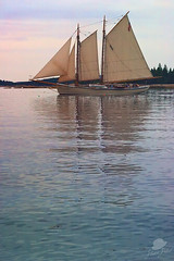 Schooner Stephen Taber (vcrimson) Tags: ocean trip sea boat maine sail schooner schooneramericaneagle mainewindjammerfleet