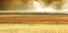 neverland (cette terre en moi) (patrice ouellet) Tags: souvenirs memories neverland magdalenislands patricephotographiste cetteterreenmoi