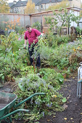 Nov_allotment (6)