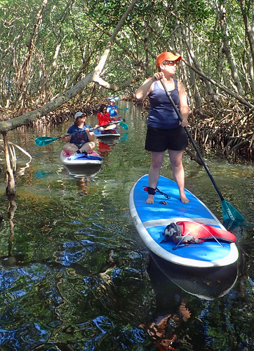 11_29_15 Private Paddle Tour Lido Key FL 09
