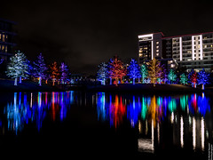 Vitruvian Lights 2015-11 (MikeyBNguyen) Tags: us texas unitedstates christmastree christmaslights christmastrees addison vitruvianpark vitruvianlights