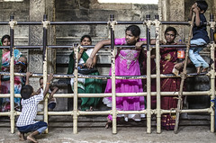@ Srirangam, Trichy (Kals Pics) Tags: life street people india man men kids fun women play god streetphotography belief holy wait tamilnadu fatih roi trichy srirangam cwc tiruchirapalli incredibleindia lordvishnu sriranganathar rootsofindia kalspics divineindia culturalindia chennaiweelendclickers lordperumal
