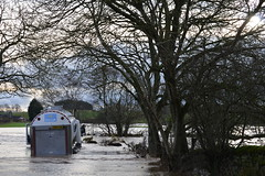 Abandoned milk tanker (Fiona in Eden) Tags: water december flood eden deluge 2015 rivereden cumbriafloods2015 cumbriapenninesedenhallgreat salkeldfieldsunder