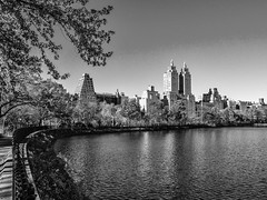 Central Park, Manhattan (nianci pan) Tags: city nyc urban bw lake newyork building tree architecture landscape pond cityscape centralpark manhattan sony reservoir pan    sonyalphadslr  nianci sonyphotographing