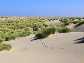 Her barefooted steps on the untouched dunes of Texel