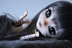DSC_0072 (*** Artemiss ***) Tags: pullip doll fc full custo custom azazelle cat artemiss