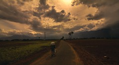The way.. (Bharani Eswaran) Tags: indianculture india travelphotogrsphy travel way sun sunrain rain sky man colours dry ngc discoverplanet discoverychannel nationalgeographicgroup
