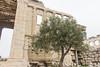 Athens-52 (Davey6585) Tags: travel wanderlust europe greece athens canon canont2i canonphotography acropolis akropolis acropolishill erechtheion erechtion templeofathena templeofposeidon ruins greenruins ancientgreece ancient architecture