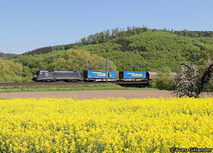 TXL Logistics 182 565, Freden 07.05.2016 (Trainspotting-Wiki) Tags: txl tx logistics 185 565 freden leine walter