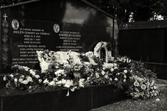 Oxford / England: Wolvercote cemetery. Grave with flowers (wwwuppertal) Tags: oxford oxfordshire england gb greatbritain uk unitedkingdom wolvercotecemetery grosbritannien friedhof graveyard sepulchralkultur sepulchralculture grabstein grabsteine burialsite burialground boneyard buryingground vereinigteskönigreich headstone gravestone tombstone fujifilmxpro1 fujinonxf35mmf2rwr fujifilmxsystem sw schwarzweis bw blackandwhite monochrome monochrom getont toned toning tonung noiretblanc blancetnoir