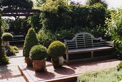 1999 Netherlands // (maerzbecher-Deutschland zu Fuss) Tags: 1999 netherlands nederland nederlân garten garden tuin