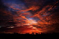 Sunset Cloud Porn (nagyistvan8) Tags: nagyistván túrkeve magyarország magyar hungary nagyistvan8 háttérkép background természet nature színek colors kék fekete fehér piros vörös sárga narancs blue black white yellow red orange naplemente sunset felhők clouds tájkép landscapes ngc napfény sunshine 2016 nikon