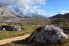 tra Sennes e Biella (Tabboz) Tags: montagna trekking escursione cammino acqua cielo cima sentiero valle erba pini natura panorama vetta estate dolomiti parco salita traversata