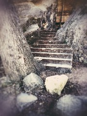 Hidden - iPhone (Jim Nix / Nomadic Pursuits) Tags: stairs vintage snapseed bullcreek park austin iphone
