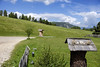 Alto Adige (Italy) - Alpe di Siusi (Massimo Battesini) Tags: nationalgeographic worldtrekker fujifilmxt1 fuji xt1 fujixt1 fujifilm finepix fujinon fujinonxf18135 fuji18135 fujifilmfujinonxf18135mmf3556rlmoiswr montagna montagne dolomiti mountains montañas berg dolomite dolomitas dolomites alpi alpes alps alpen castelrotto trentinoaltoadige italia it italy italie italien europa europe siusi seiseralpe alpedisiusi seiseralm