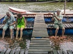 _B054781 Tickling feet .jpg (JorunT) Tags: fotbad fisk srilanka 2016 fiskespa maduganga elvesafari