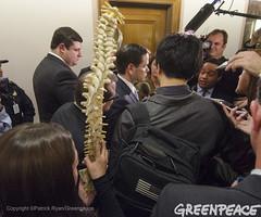 Bringing A Spine To Rubio Press Conference (Greenpeace USA 2016) Tags: tillerson rex donald trump secretaryofstate capitol capital washington dc oil fossilfuel exxon mobile climatechange denier usa