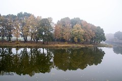 Reflection , #Landscape , #trees , #autumn , #water , #Nature , #Picturesque , #CloseUpPhotography , #saturation , #Devoid , #Devoted , #Harmonious , #Haunting , #Hideous , #Diaphanous , #wanderlust , #Photojournalism , #Attractive , #Austere , #HighSpeed (jwzw@ymail.com) Tags: reflection landscape trees autumn water nature picturesque closeupphotography saturation devoid devoted harmonious haunting hideous diaphanous wanderlust photojournalism attractive austere highspeedphotography hilarious hipshot historical colorful diaristic difficult diffused familyphotography honest historicalphotography hollow