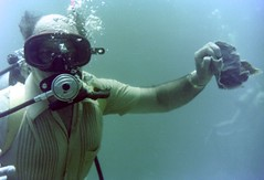 n0005.21 (avaragado) Tags: barbados coralreefclub fd197504 fd197604 fd197905 n0005 tonysmith