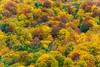 DSC_7604 (sergeysemendyaev) Tags: 2016 russia sochi adler achishkho mountains landscape nature natural outdoor россия сочи адлер ачишхо горы пейзаж природа trees yellow red green деревья желтый красный зеленый осень autumn fall