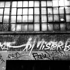 On n'y voit rien... (woltarise) Tags: ruelle montroyal avenue plateau montréal building vieux fenêtres streetwise