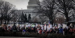 2017.01.29 Oppose Betsy DeVos Protest, Washington, DC USA 00228