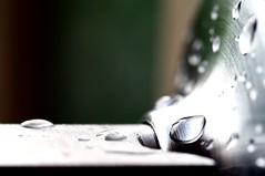The Drop (Rose Slr) Tags: closeup macro silver door doorhandle doorknob metal raindrops raindrop rain drop water
