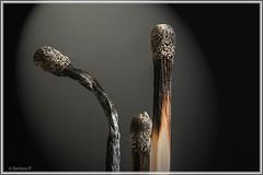 ausgebrannt / to burn down