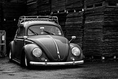 _DSC0065 (christophe_boron) Tags: cox vw nb voiture ancêtre