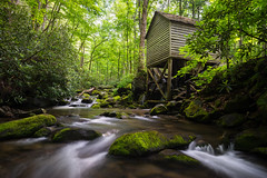 Roaring Fork Grist Mill (Longleaf.Photography) Tags: green mill water creek river landscape waterfall stream tn outdoor serene gatlinburg cascade smokies roaringfork grist warer gsmnp utdoor reagansmill